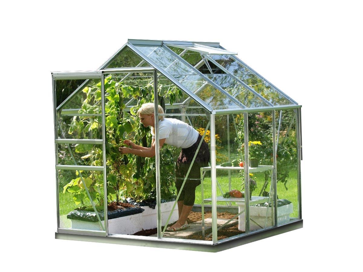 Serre de jardin en verre Vénus 3,80 m² + Base - Gris