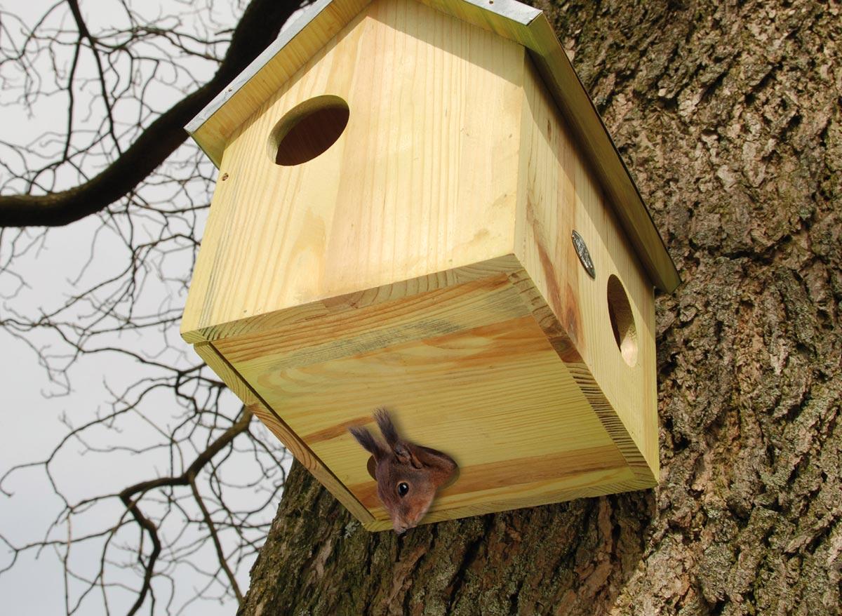 Abri pour écureuils